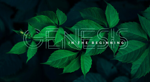 Genesis: In the Beginning (The Big Picture Series)